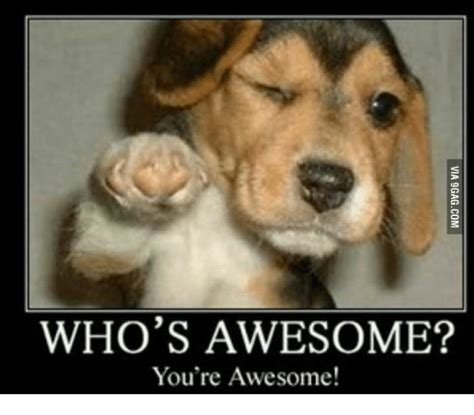 whose awesome you re awesome who s awesome you re awesome whos awesome meme on me me