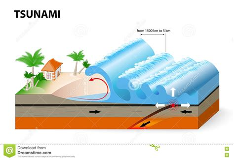 Outline The Causes Of Earthquakes Scheme a tsunami is a series of waves stock vector image 75603394