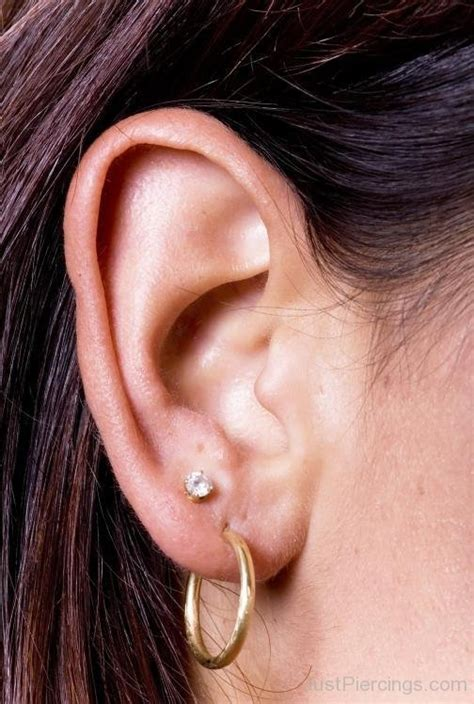 female ear lobes anti tragus piercings