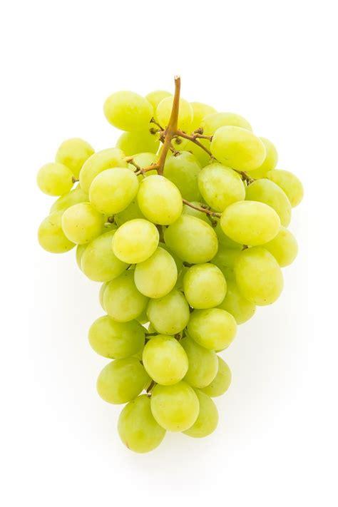 imagenes de uvas y frases d 233 licieux grappe de raisin t 233 l 233 charger des photos