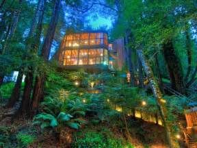 world of architecture tree house in the forest mill