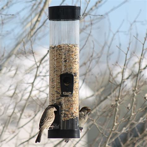 Small Bird Feeders Duncraft Surefill Small Plastic Bird Feeder