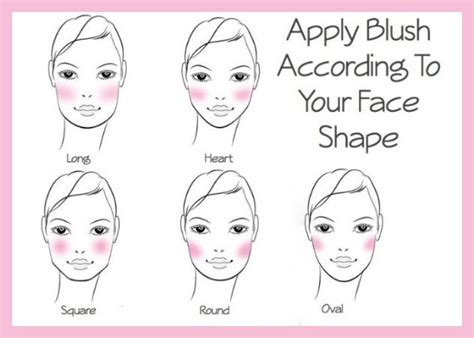where do you go to apply for section 8 how to apply blush according to your face shape health