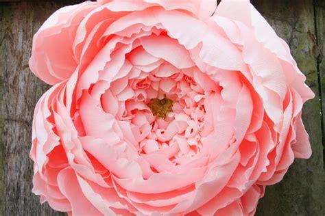 paper flower peony tutorial giant closed crepe paper peony carte fini