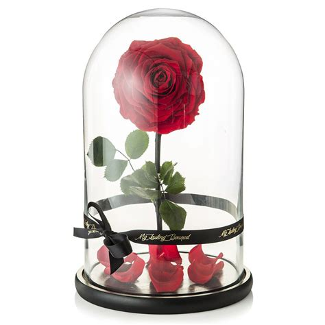 enchanted rose that lasts a year beauty and the beast real enchanted rose created by my