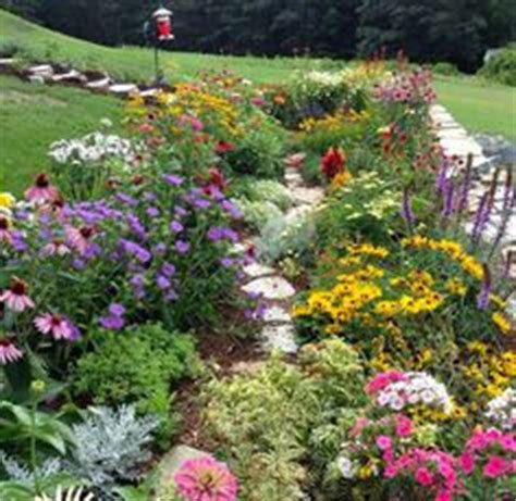 Wildflower Garden Ideas 1000 Images About Gardening Ideas Wildflowers And More On Perennials Seed Bombs