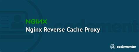 tutorial nginx php php devops tutorial nginx reverse cache proxy codementor