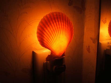Nightlight Ls by Shell Lights Real Seashell Decorative Nitelites