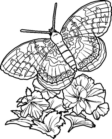 very hard coloring pages of flowers butterfly coloring pages