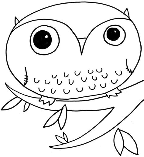 baby owl coloring page gallery photos 23410
