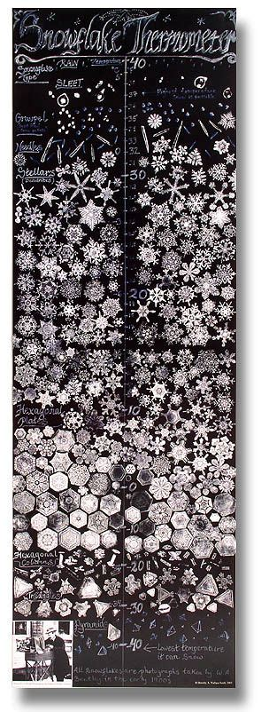 snowflake bentley camera 25 best ideas about snowflake images on pinterest