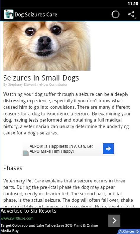 seizure medications for dogs seizures treatment appstore for android