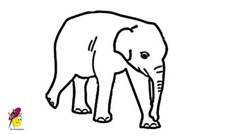how to draw a doodle elephant baby elephant easy drawing how to draw an elephant