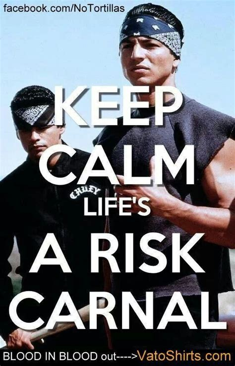 Blood In Blood Out Memes - life s a risk carnal keep calm pinterest life