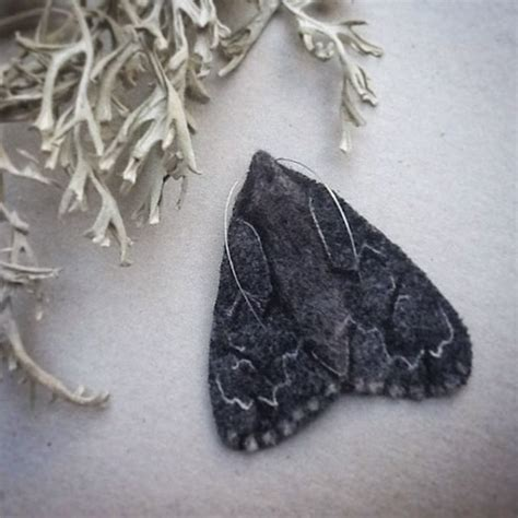 1000 images about the needle on moth 1000 images about cuddly insects on brooches