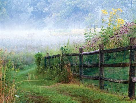 pasture perfect  wildflower meadow garden design