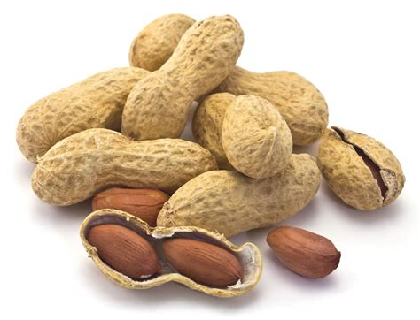 tree nuts and peanuts safer eating