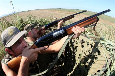 documenti porto d armi falsi documenti per i tesserini denunciati 44 cacciatori