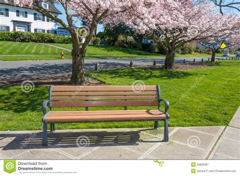 park bench productions park bench cherry trees residential street royalty free