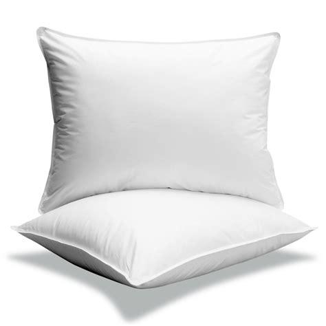 best hypoallergenic pillows 2019