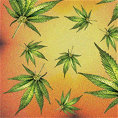 Wallpaper Sticker Dinding Coklat Batik Orange Classics marijuana fabric wallpaper gift wrap spoonflower