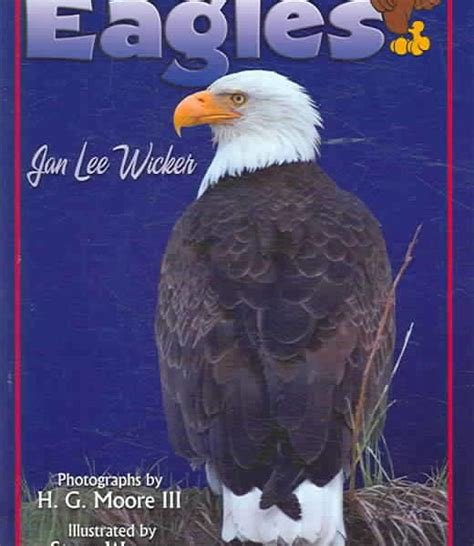 american eagle style textbook books those excellent eagles book american association