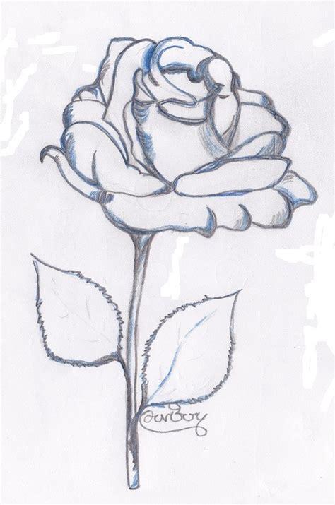 come si disegna un fiore i fiori visti in arte e attraverso la tecnica disegno