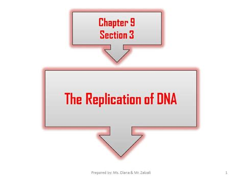 chapter 12 section 2 replication of dna dna replication chapter 9 3 презентация онлайн