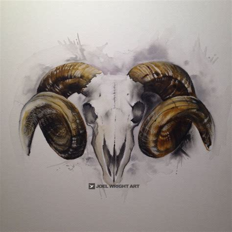 ram skull tattoo best 25 ram skull ideas on aries ram