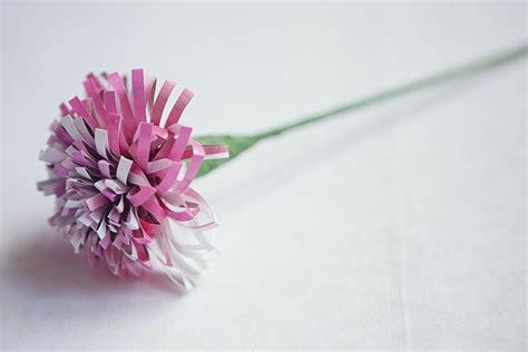 come si fanno i fiori di carta fiori di carta istruzioni fiori di carta istruzioni
