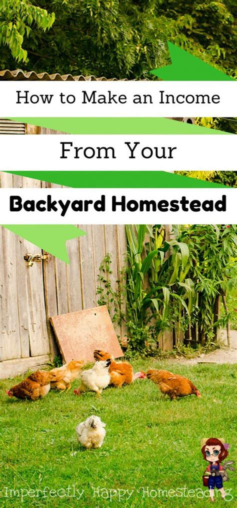 Backyard Homesteading by 25 Best Ideas About Backyard Farming On Do