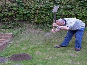 How To Get Rid Of Moles In The Backyard Gardening Amp Landscaping How To Get Rid Of Moles In Yard