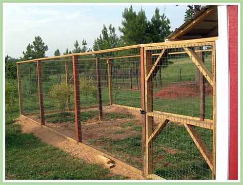 Chicken In The Backyard by Wit S End Farm The Chicken Yard