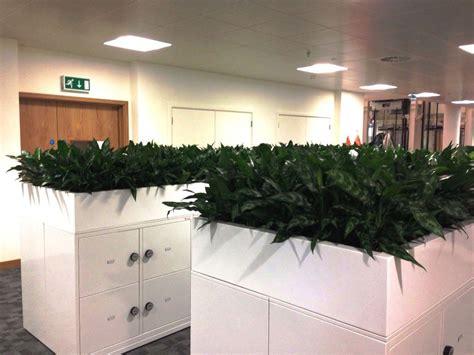 innovative fun indoor planter ideas garden lovers club