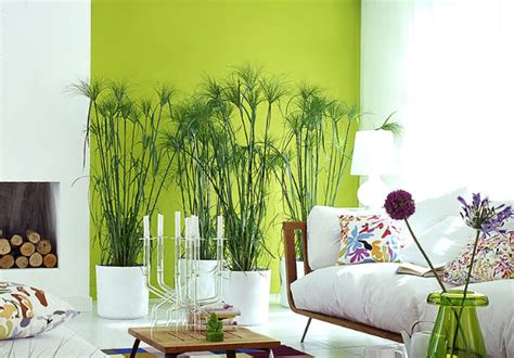 lime green home decor can you choose a green color for living room what woman