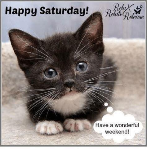 Happy Saturday Meme - 25 best memes about happy saturday happy saturday memes