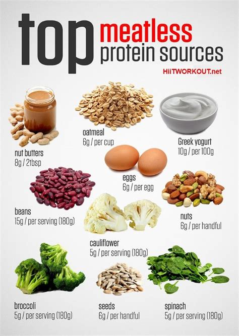 The Best Diet Foods High In Protein by Best 25 Protein List Ideas On Protein In Food