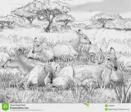 african landscape coloring pages african animal coloring pages coloring kidz coloring