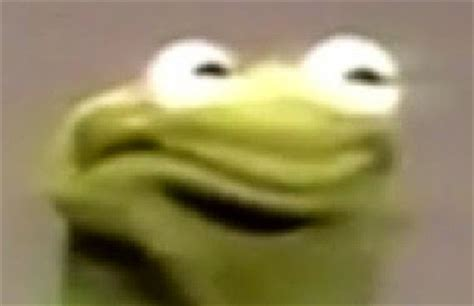 Kermit Meme My Face When - jimmyfungus com and so i return subjects covered in