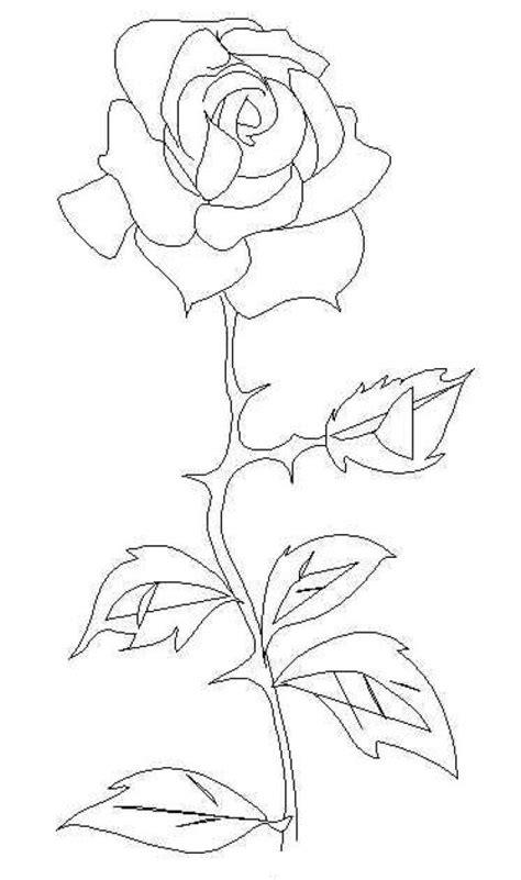 imagenes de rosas con espinas free coloring pages of espinas