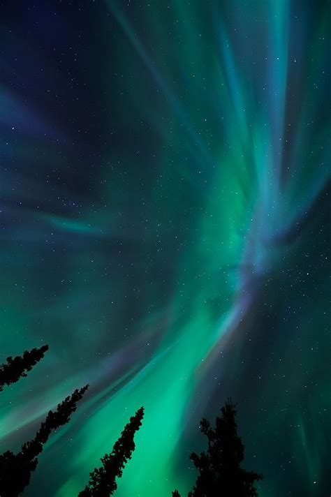 where are the northen 48 best images about aurora borealis northern lights on