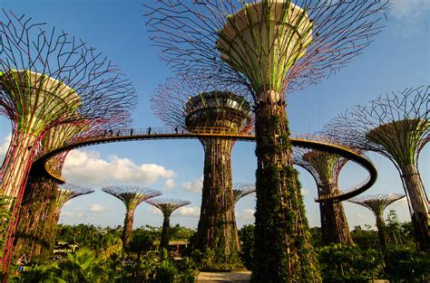 Gardens By The Bay Admission E Ticket garden by the bay ticket in singapore activity in