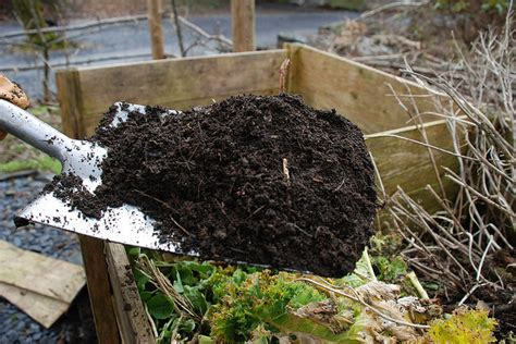 How To Backyard Compost by Backyard Composting Workshop The Table Community Food Centre
