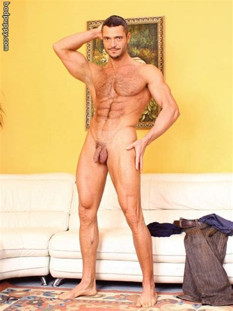 Sergio Soldi Badpuppy Gay Muscle Time Blog