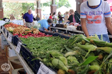 food in winter garden fl inaugural winter garden harvest festival on may 5th