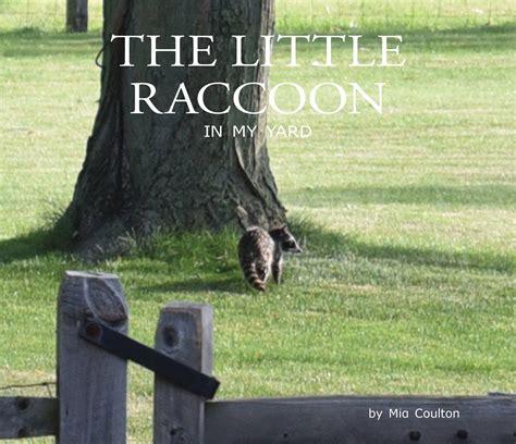 raccoon in my backyard the little raccoon in my yard is appropriate for early