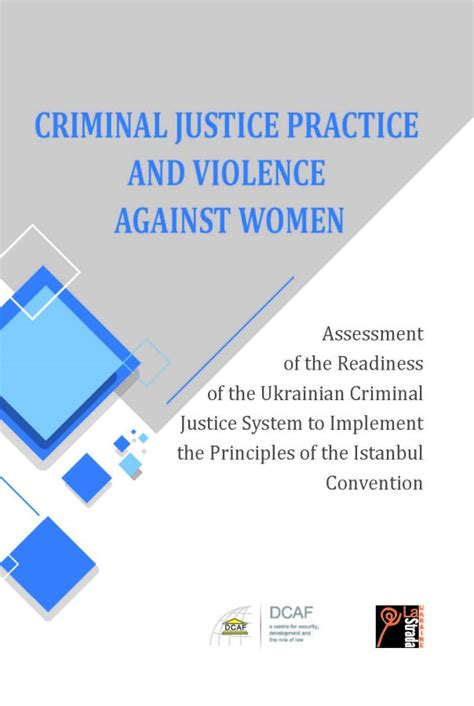 best practices for in the criminal justice system service best practice guides volume 3 books criminal justice practice and violence against ukraine