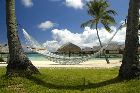 Picture Of Hammock file hammock polynesia jpg