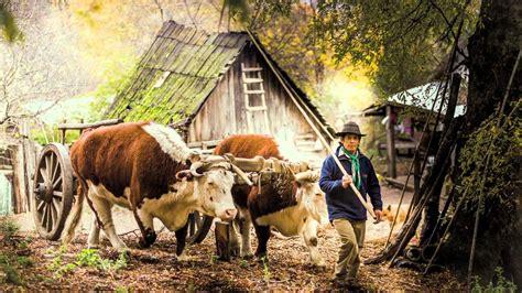 libro andes libro fotogr 225 fico san mart 237 n de los andes aldea de monta 241 a youtube