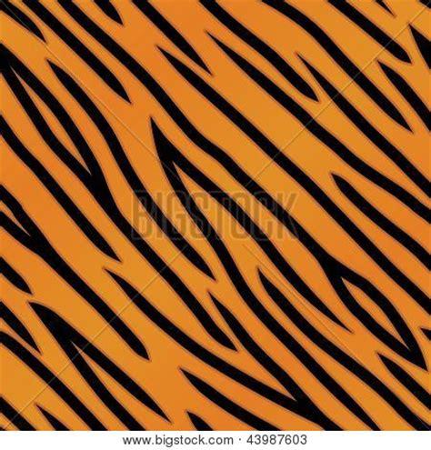 tiger stripe template tiger stripe pattern stock vector stock photos bigstock